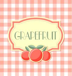 grapefruit label on squared background vector image