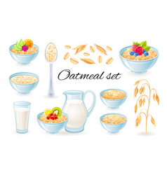 Oatmeal icons oat meal in bowl with fruit vector