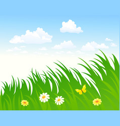sky and grass background vector image