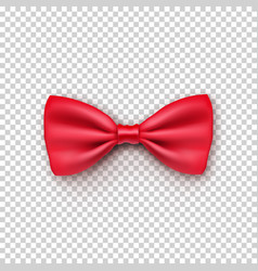 stylish red bow tie from satin vector image