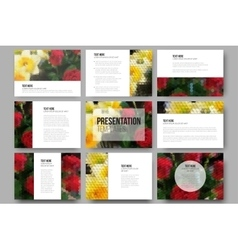 Set of 9 templates for presentation slides Roses vector image