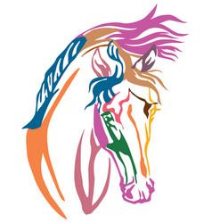 Colorful decorative portrait of arabian horse vector