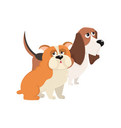 Cute funny dog characters - jbasset hound and vector