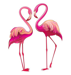 two colorful flamingos looking at each other and vector image