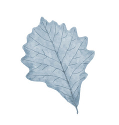 Watercolor winter frozen leaf isolated on white vector