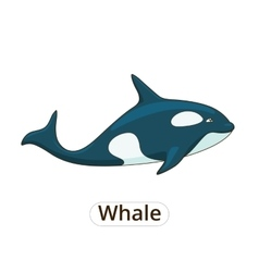 Whale orca cartoon vector