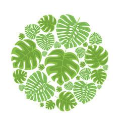 palm leaf decoration vector image vector image