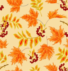 Seamless texture rowanberry and maple leaves vector image
