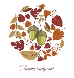 Autumn leaves with acorn vector image