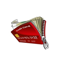 Credit card with dollar and euro bills inside vector