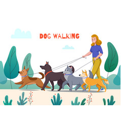 outdoor dog walking composition vector image