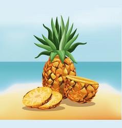 Pineapple fruit fresh harvest - beach background vector