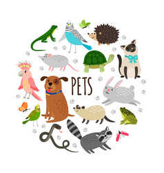 popular pets round banner design cartoon vector image