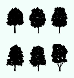Realistic tree silhouette collection vector