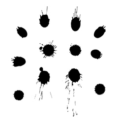splashes vector image