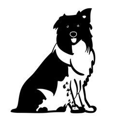 Welsh sheepdog eps vector