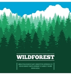 Wild landscape with fir trees coniferous forest vector