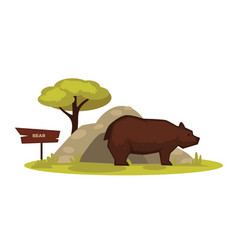 Bear zoo animal and wooden signboard vector