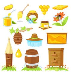 cartoon elements beekeeping vector image