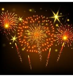 Coloured firework on black background vector image