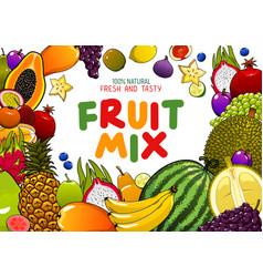 Exotic fruits tropical juicy mix berries vector