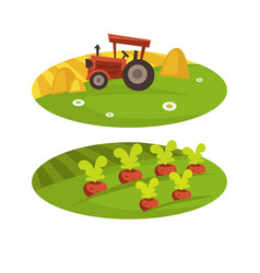 farm agriculture harvest field and tractor with vector image
