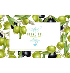 Olive horizontal banner vector