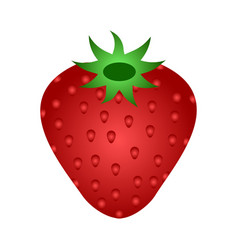 ripe red strawberry icon vector image