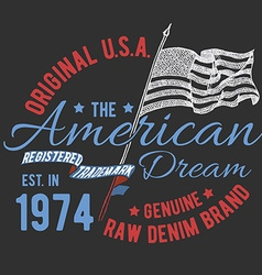 T-shirt typography design USA printing graphics vector image