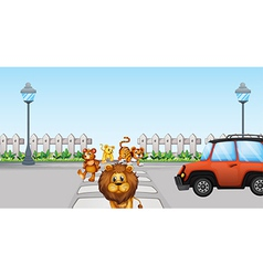 Wild animals crossing and a car in road vector