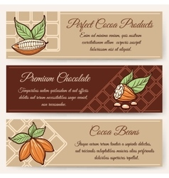 Chocolate and cocoa banner templates vector image vector image