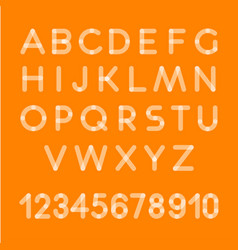 letters alphabet font typographic vector image