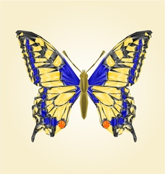 Butterfly swallowtail beautiful insect polygons vector