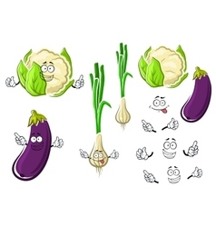 Cauliflower onion and eggplant vegetables vector image