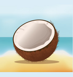 Coconut fruit fresh harvest - beach background vector
