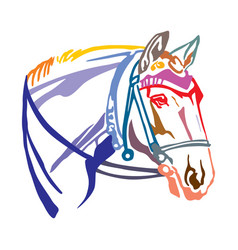Colorful decorative portrait of horse with bridle vector