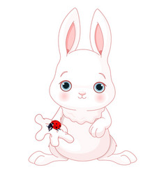 Cute bunny holds lady bug vector