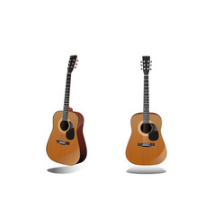guitar front view on a white background vector image