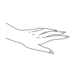 hand design female palm and manicured fingers vector image