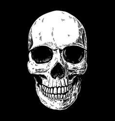 Human skull on dark background design element for vector