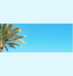 palm tree on blue sky background long blurred vector image