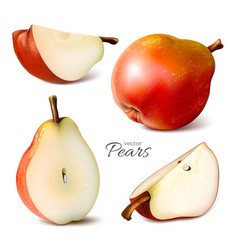 Pears whole and slices vector
