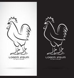 rooster or cock design on white background and vector image