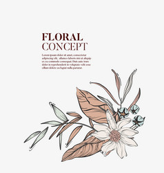 wild flowers romantic bouquet elegant romantic vector image