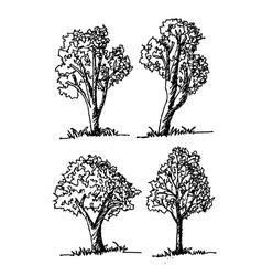 Trees design background vector