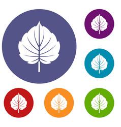 Alder leaf icons set vector