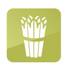 Asparagus outline icon vegetable vector