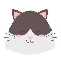 cute cat black and white head vector image