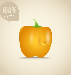 Cute fresh yellow paprica vector image
