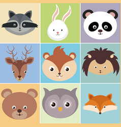 cute group of animals heads characters vector image